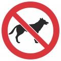 Kustība ar suni aizliegta